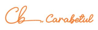 CaraBetul Logo